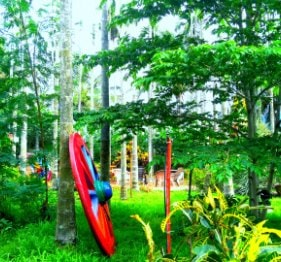 Chikmagalur homestay for family
