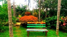 Chikmagalur homestay garden bench
